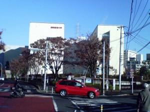 Showa Academy