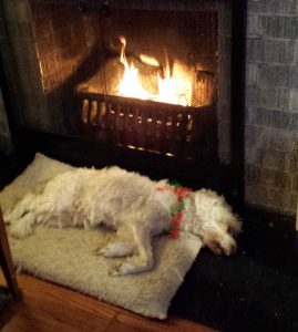 tucker-fireplace-crop
